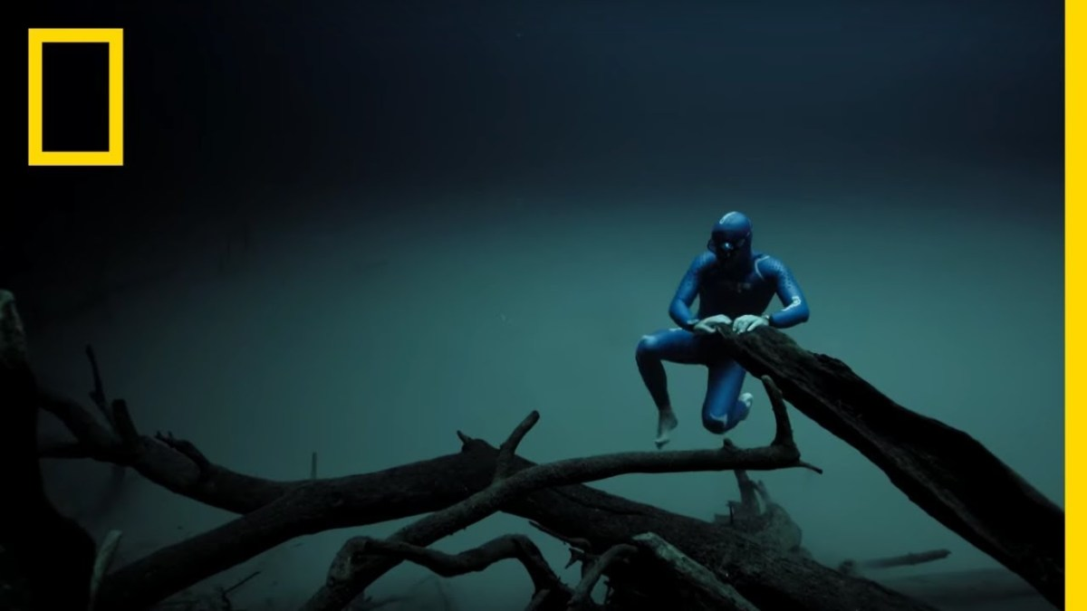 Experience the Underwater World Through the Eyes of a Freediver | Short Film Showcase